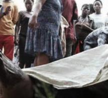 Drame aux HLM Grand Médine - Un chauffeur tue un nigérian au cours d'une...