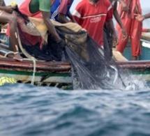 Un pêcheur (encore) porté disparu