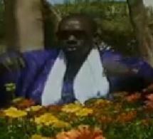ndiaga mbaye-kaay fii