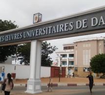 Université Cheikh Anta Diop : Les étudiants exclus suspendent leur grève de la faim
