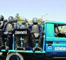 Sécurisation de la Gendarmerie : 108 individus interpellés dont 09 pour détention de drogue