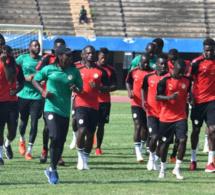 Classement FIFA: Le Sénégal dans le Top 20 mondial