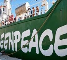 Usine de fabrication de farine de poisson à Sandiara et Kayar : Greenpeace Afrique devrait informer juste et vrai…( Kadialy Gassama),