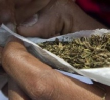 Mass Dia tombe avec 111 cornets de drogue