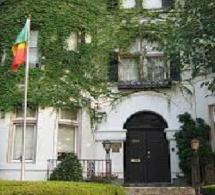 Ambassade du Sénégal à Washington : quand Les recrutés locaux «chassent» les diplomates de carrière !