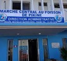 Djiby Ndiaye, Pdt du collectif des mareyeurs du Sénégal : «L'ex-Dg du marché central de Pikine doit s'expliquer sur les 140 millions de L'APIX»