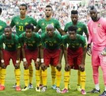 Mondial 2014 : les Lions Indomptables acceptent finalement de partir au Brésil !