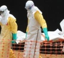 """Une femme enceinte """"miraculée"""" de la fièvre Ebola"""