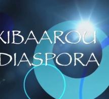 JOLOFTV.COM PRESENTE LA REVUE DE PRESSE DE LA DIASPORA (Wolof)
