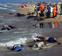 27 cadavres de migrants africains repêchés au large de Zarzis en Tunisie