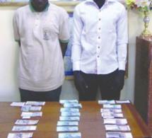 Escroquerie sur de faux billets : Doukouré et Bosco s'inspirent de l'affaire Thione Seck