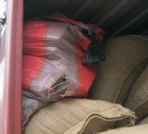 La gendarmerie met la main sur 300 kg de chanvre indien à Popenguine