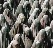 Interdiction du port du voile intégral : Une dérive, selon les cadres musulmans