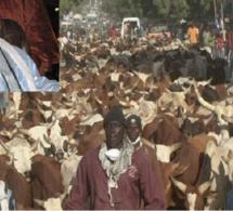 Grand Magal de Touba: Cheikh Béthio et ses disciples vont casser la baraque