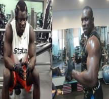 Vidéo-Bécaye Mbaye : Le Combat Boy Niang et Gouye Gui est presque ficelé …